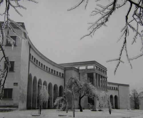 ist mo dom kulture 1963 ivica grubišić